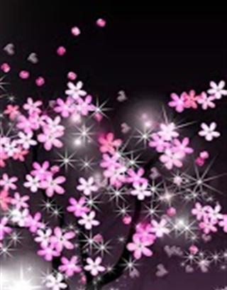 3d动态壁纸樱花高清,一个美丽的樱花动态壁纸,让