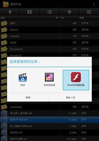 Flash实用播放器截图