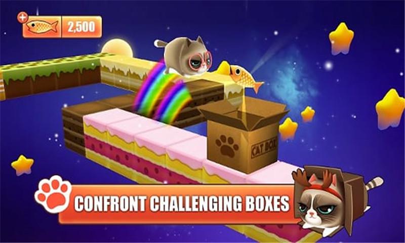 盒子里的猫截图