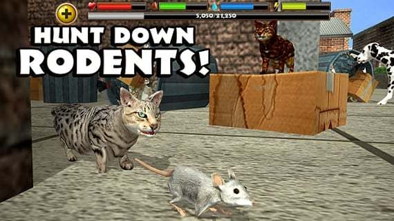 流浪猫模拟截图