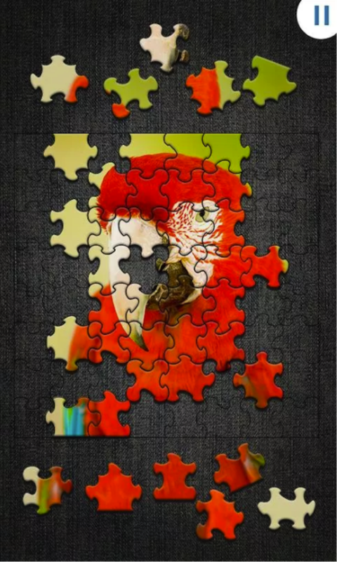 拼图游戏Jigty