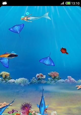 会游动的鱼壁纸_动态海洋(有鱼游动)的电脑桌面壁纸-
