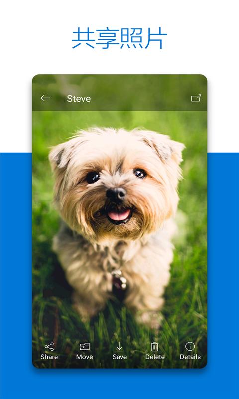 OneDrive截图
