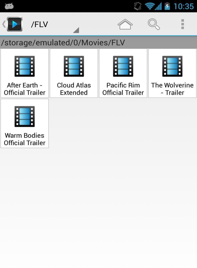 FLV视频播放器截图