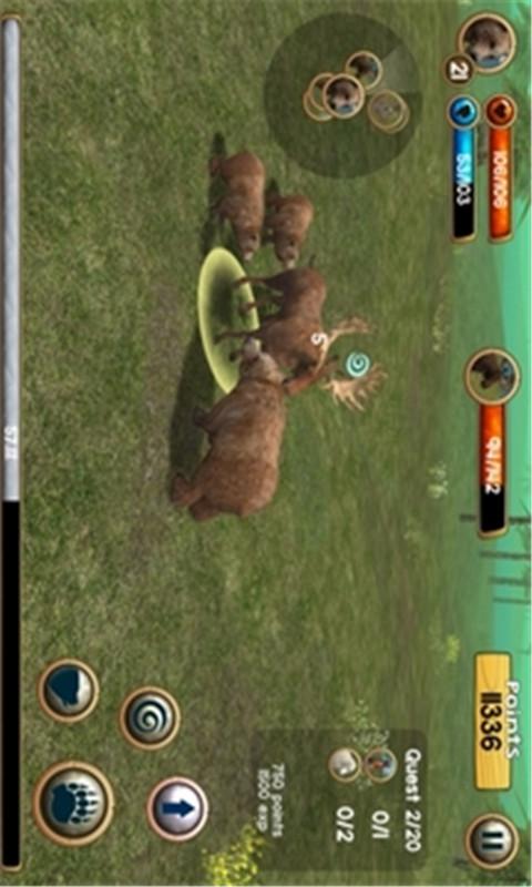 野熊模拟3D