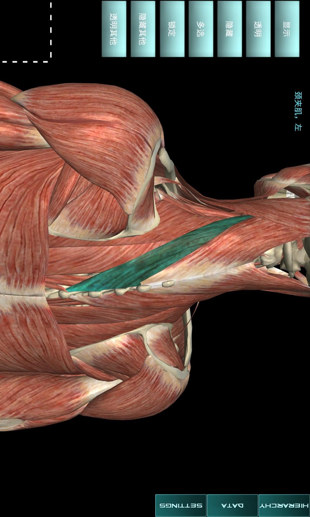人体解剖学图集截图