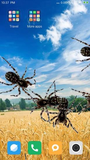 蜘蛛在手机爬行