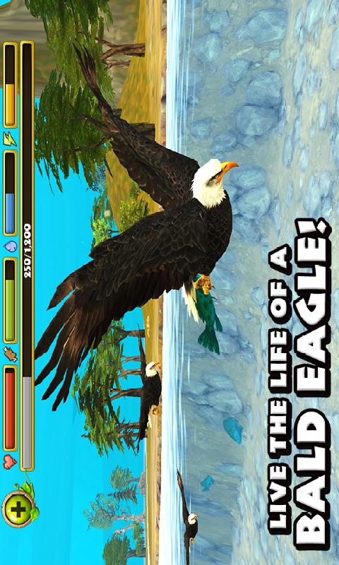 猎鹰模拟截图