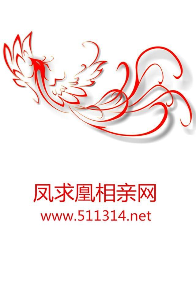 相亲网logo设计分享展示