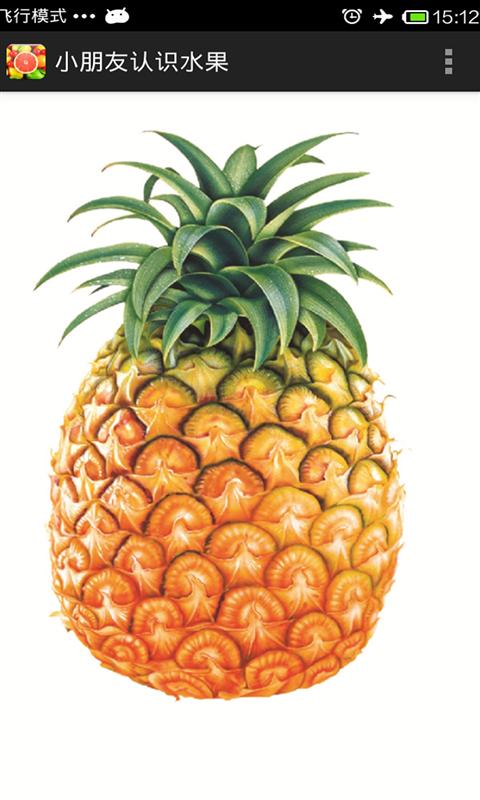 小朋友认识水果