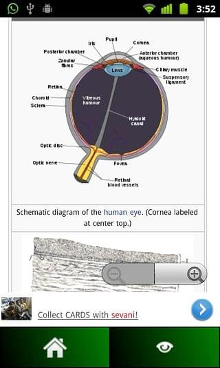 Anatomy Guide截图