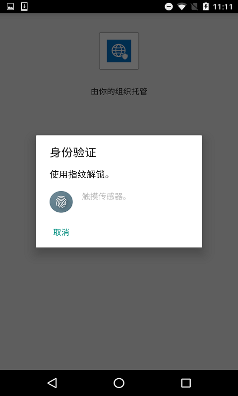 Managed Browser截图