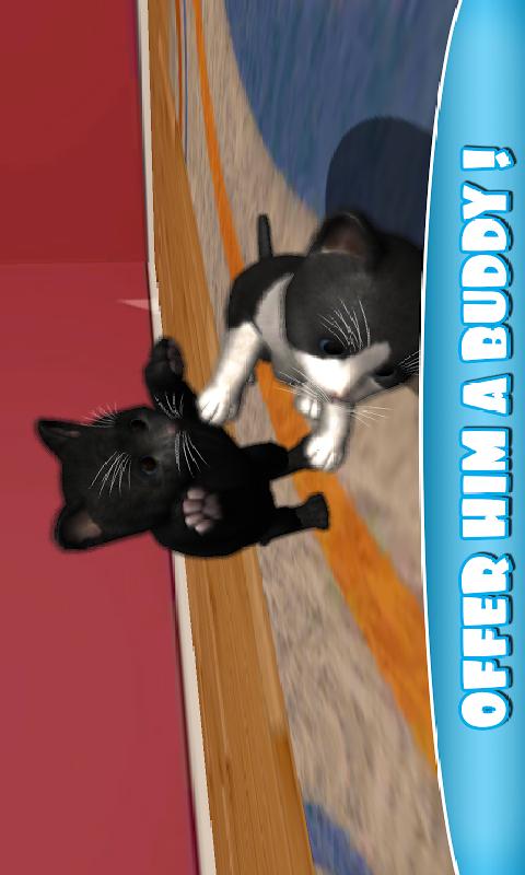虚拟宠物猫