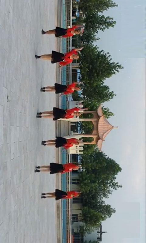 广场健身舞截图