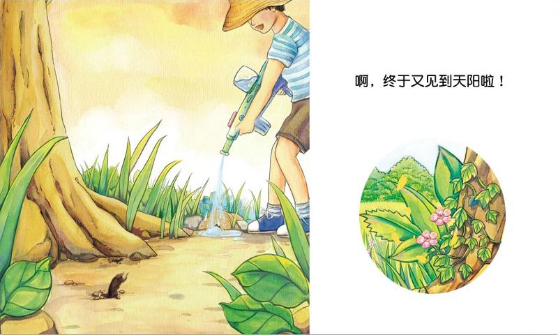 糖球历险(大树篇)