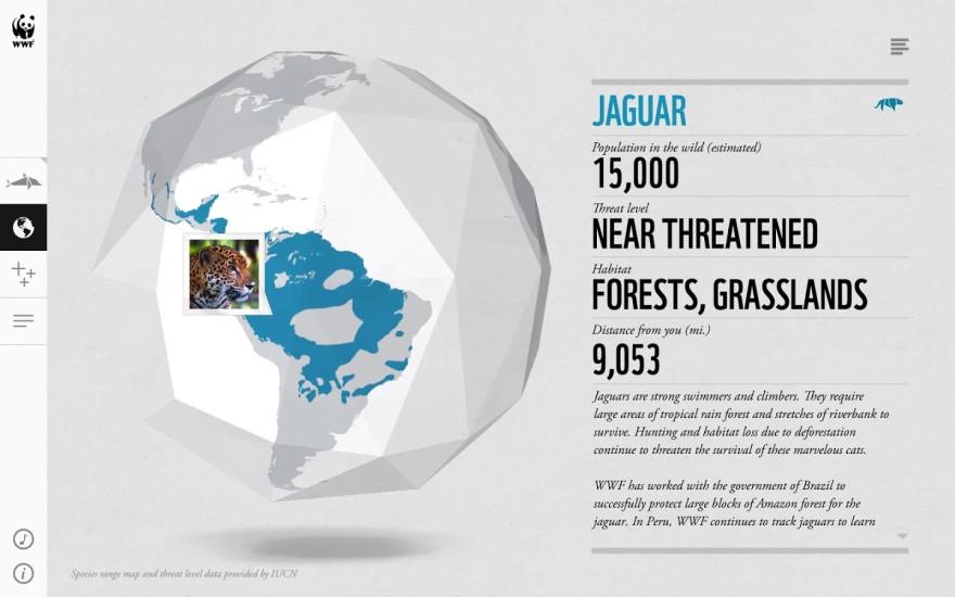 世界野生动物在一起截图