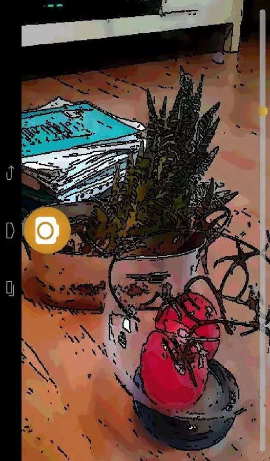 Cartoon Camera截图