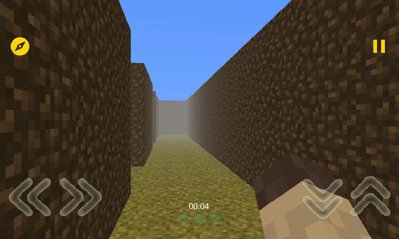 我的迷宫3D截图
