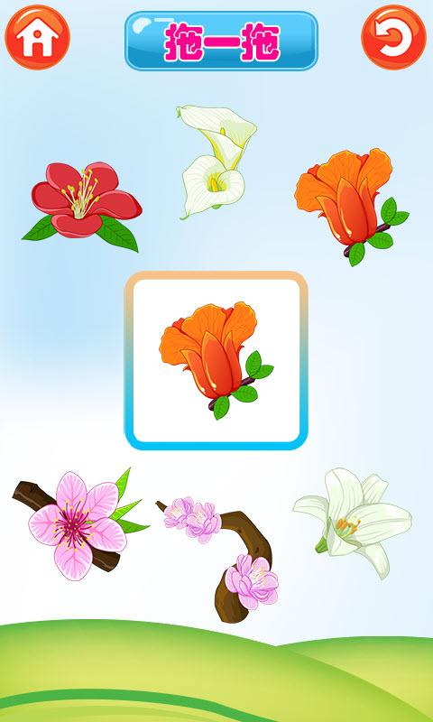 宝宝识植物