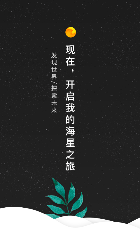 海星视频截图