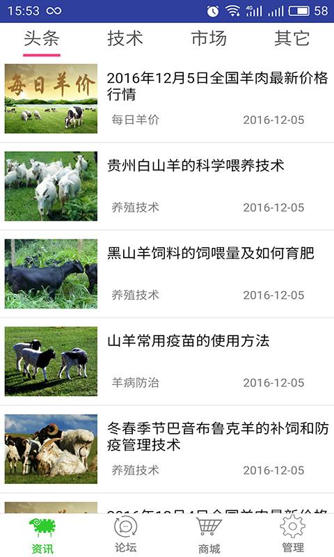 养羊宝截图