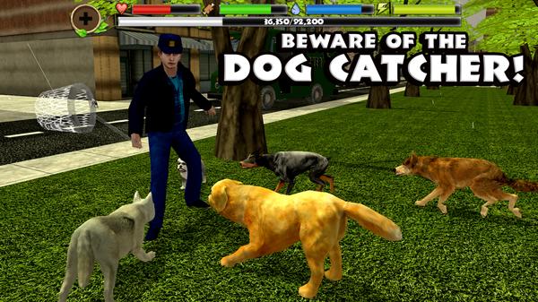 流浪狗模拟截图