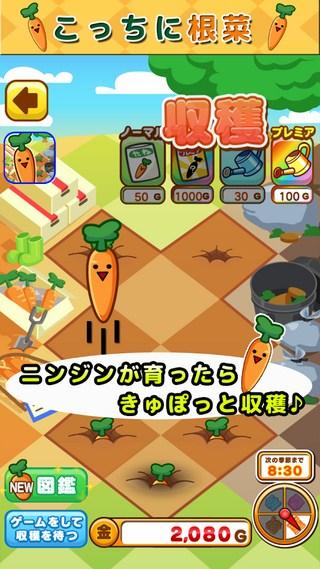这是根菜:胡萝卜篇截图