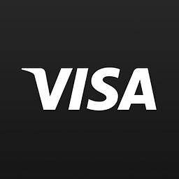 Visa探索