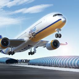 真实飞行体验