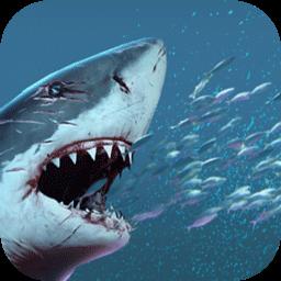饥饿变种鲨-大鱼吃小鱼